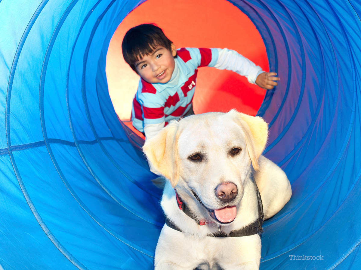 can-dogs-help-children-autism-2-119623830.jpg