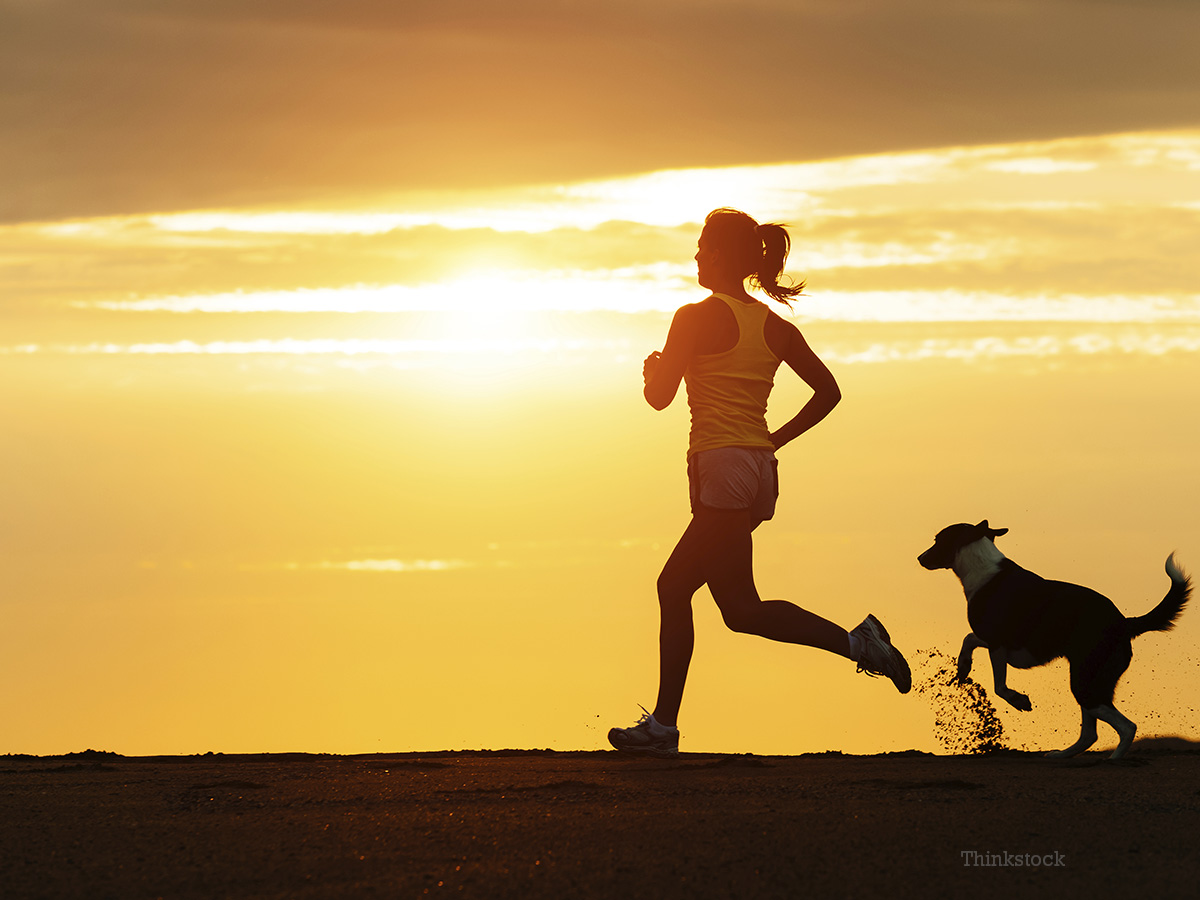 How to Exercise With Your Dog