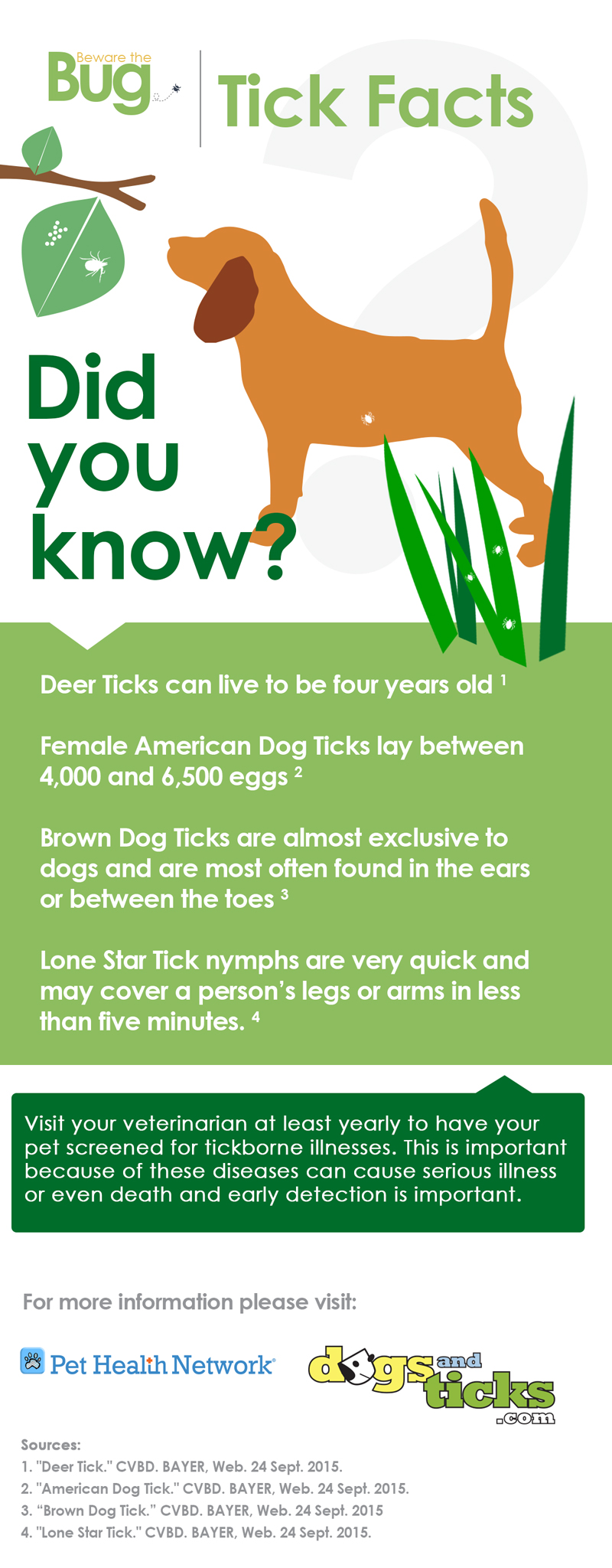 Where Did The Races Come From: Tick Facts: Did You Know?