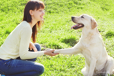 Woman smiling at her Labrador