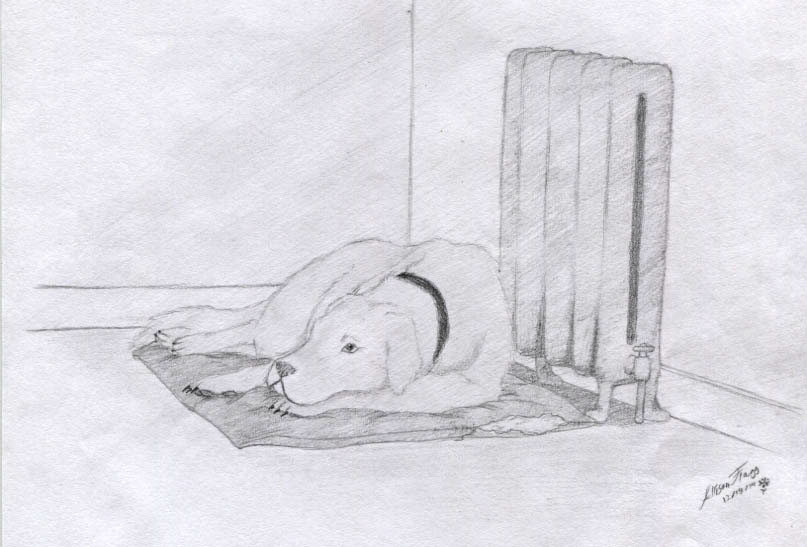 illustration of a dog laying down by a heater