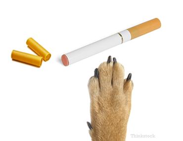Nicotine Patch Toxicity Symptoms