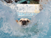 Splash! 5 great ways to keep your dog safe around water.