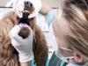 Worn Teeth in Dogs