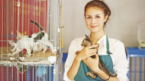 Five Ways to Help Your Local Shelter