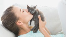 Supporting Feline Health Research