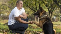 Therapy Dogs Aid Soldiers during Counseling