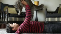What You Don't Know Your Cat is Trying to Tell You