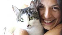 Notoedric Mange in Cats