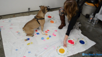 Painting with Pups