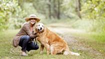 senior dog lives longer