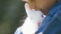 Hero Bunnies save a Family from Fire