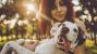New Legislation Will Protect Pets Involved in Domestic Violence