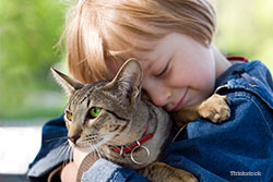 Little boy hugging cat