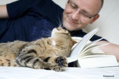 Happy cat on Book